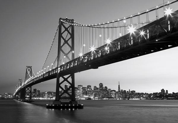 Fotomural San Francisco Skyline 134