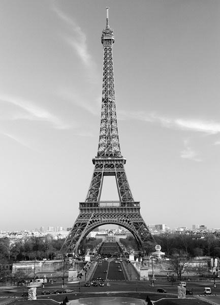 Fotomural La Tour Eiffel 386