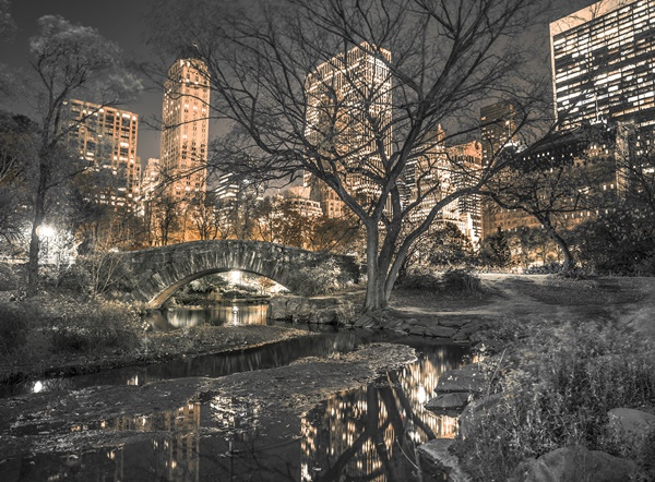 Fotomural W4P Central Park 001