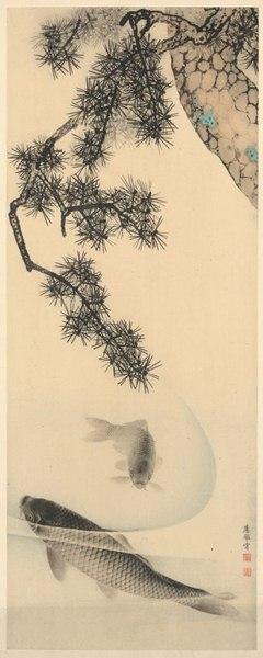 Fotomural Koi V2-762